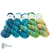 Basic Sock 4-ply - 20210712 (fade color 8)_
