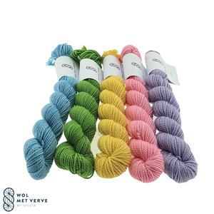Merino Twist Sock Mini -Spring 1
