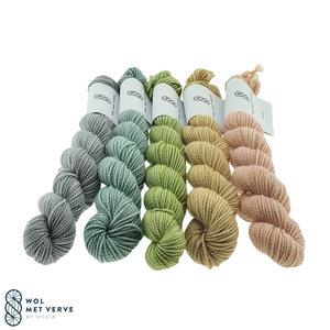 Merino Twist Sock Mini -Spring 2